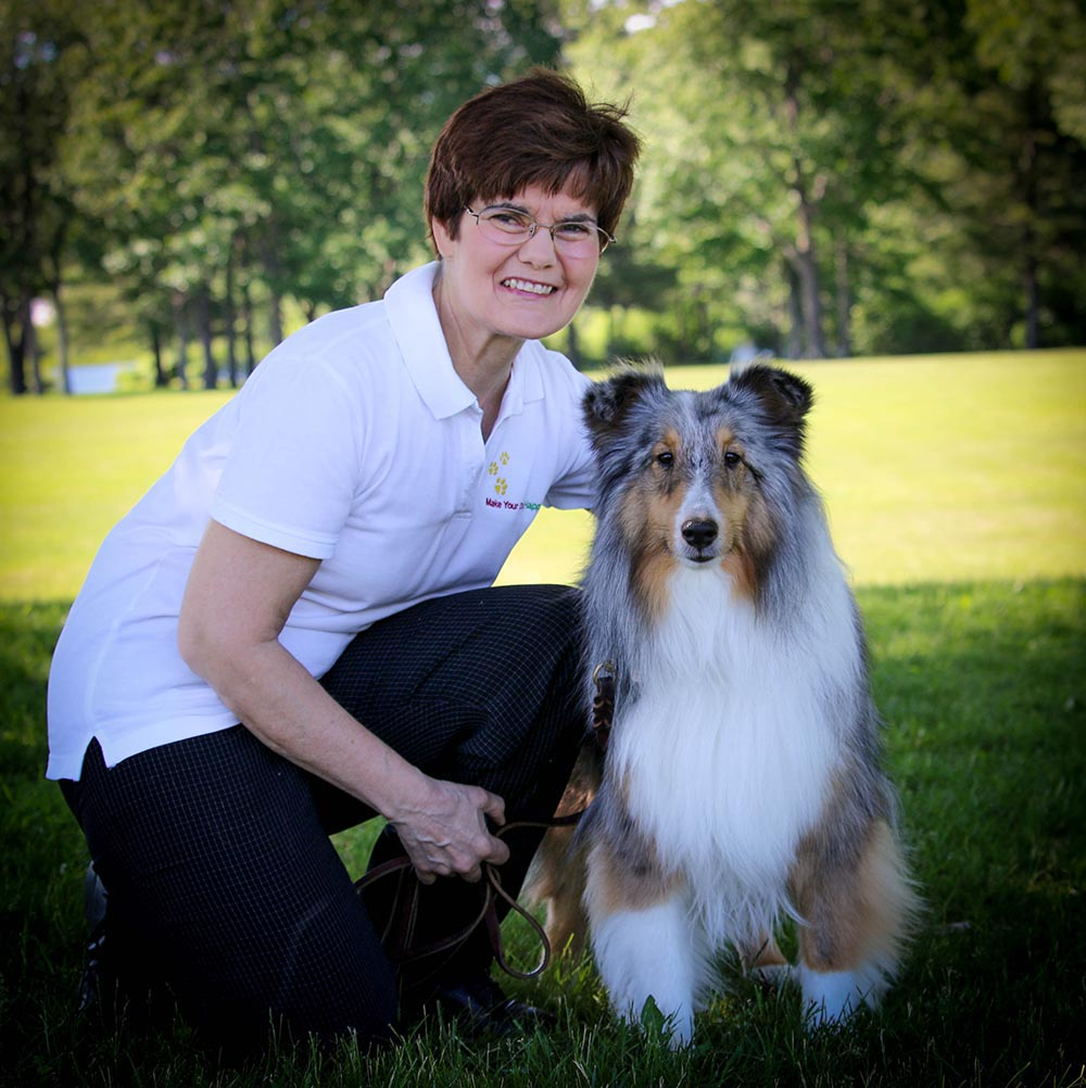 Certified Dog Trainer New Hampshire